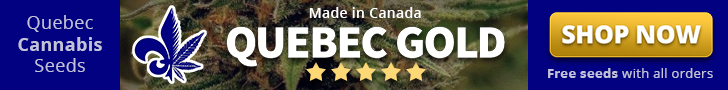 Quebec Cannabis Seeds