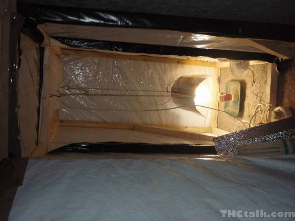 grow tent dual compartment forum