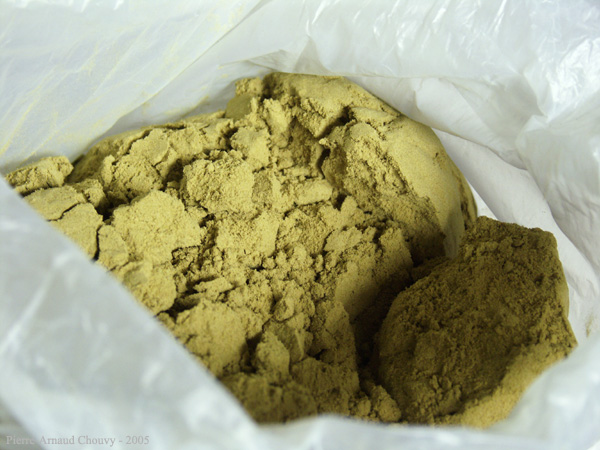 Resin Powder Welcome To Thctalk Com Cannabis Gallery